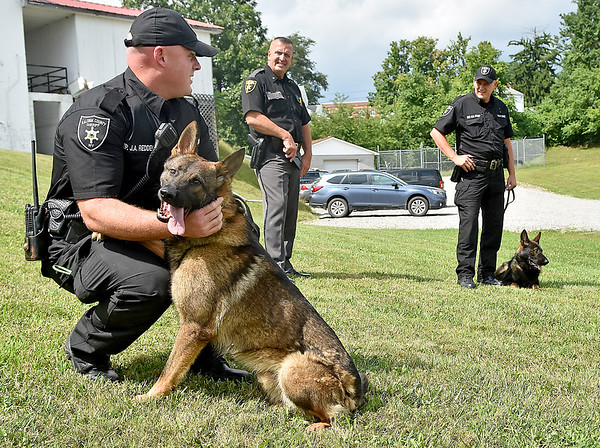 """(Brad Davis/The Register-Herald) Sheriff Scott Van Meter, middle, looks on as Lt. Jason Redden, left, handles Cody while Sgt. Bobby Stump handles Clutch, two of three new K-9 members to join the force at the Raleigh County Sheriff's Office, during a """"meet and greet"""" with local media Thursday afternoon. Both dogs are serving as narcotics, apprehension and tracking dogs while a third dog, a 9-week-old bloodhound puppy named Trigger, will be ready for active duty in a few months."""