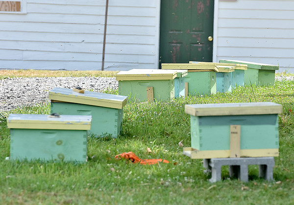 (Brad Davis/The Register-Herald) A group of hives destined for new beekeepers at the collective's new central location at Camp Lightfoot Saturday afternoon.