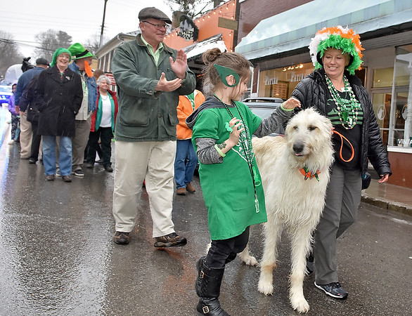 (Brad Davis/The Register-Herald) Lewisburg resident Maya Frank, 7, meets Suzanne Simmons' 6-year-old Irish wolfhound Finnbarr as they make the grueling, 60-foot walk from The Wild Bean to Irish Pub in what's known far and wide as the shortest St. Patrick's Day Parade along Washington Street in Lewisburg Friday evening.