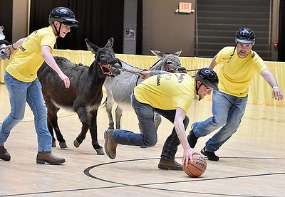 "(Brad Davis/The Register-Herald) What the ""tip-off"" looks like during a donkey basketball tournament to benefit the Raleigh County Horseman's Association Sunday afternoon at the Beckley-Raleigh County Convention Center. The rules are simple, as it's basically standard basketball, but you must be on your donkey when taking a shot. You can dismount to pick up a loose ball or move around the court quicker, but you must have your donkey in tow at all times when not riding it. RCHA hopes to have a few more of these events in the future."