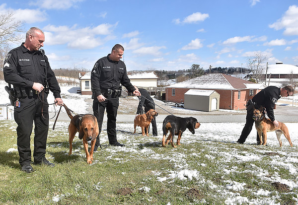 (Brad Davis/The Register-Herald) From left, Sgt. W.R. Killen handles Bella, Cpl. R.L. Talley handles Smokey, Sgt. R.R. White handles Bodi and Dep. C.B. Bloxton handles Leo and Raleigh County Sheriffs introduce their four new K-9 units during a media visit to their Eisenhower Drive station Wednesday afternoon.