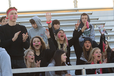 Woodrow Wilson fans celebrate a goal during Tuesday's Class AAA Region 3, Section 2 game at the YMCA Paul Cline Memorial Youth Sports Complex in Beckley. (Jenny Harnish/The Register-Herald)