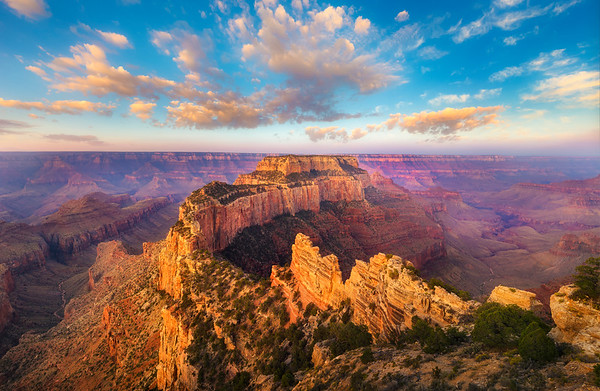 A Royal Morning - Wotans Throne - Grand Canyon National Park
