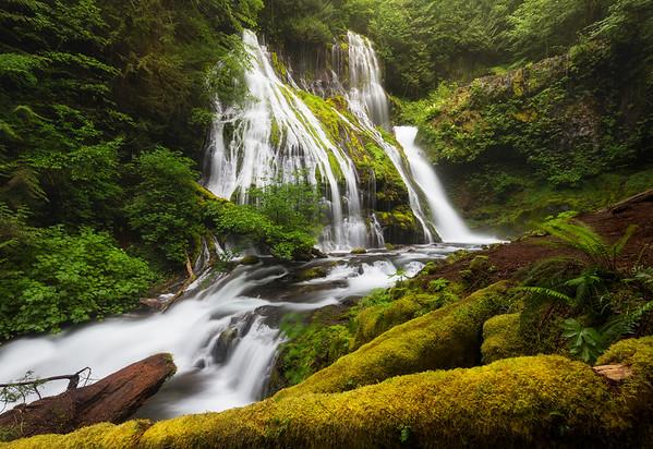 Emerald Panther - Panther Creek Falls