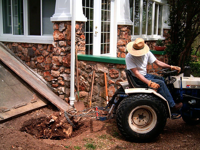 Gary pulling out a stump with the tractor. Note the 'before' condition of the greenhouse.