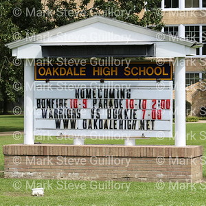 Homecoming - Oakdale High School 2014