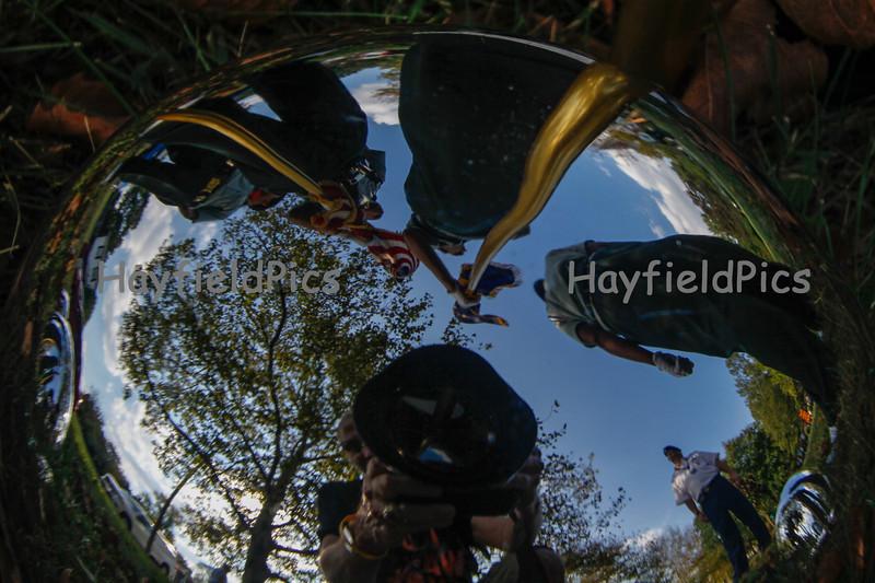 Hayfield-8945