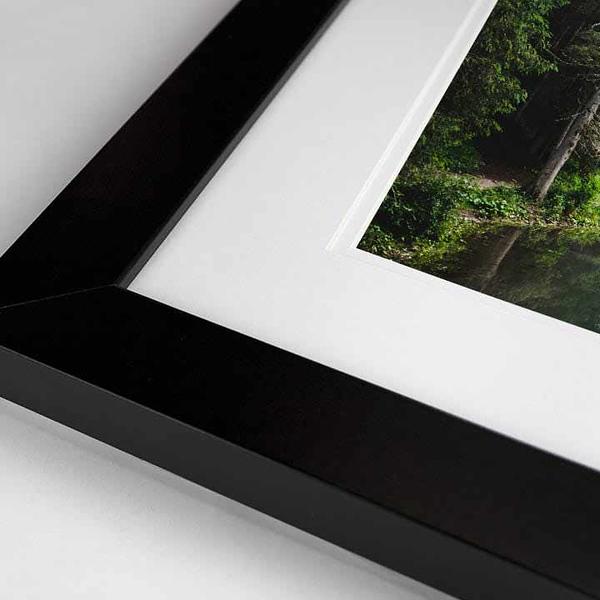 Framed Print 4