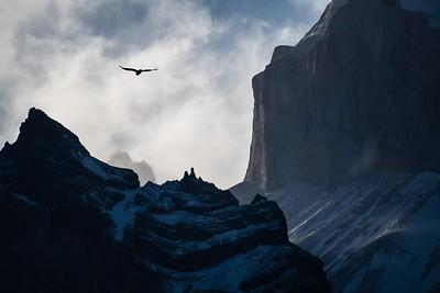 "Sarah Scheetz '21 – Photography, ""Free Flying"" –Gold Key"