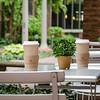 Adagio Teas patio in Downtown Chicago, IL