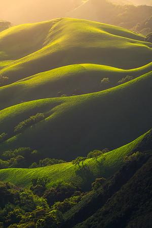 CA-  The beautifully unique landscape of California.