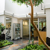New Horizons Cosmetic Surgery<br /> Skokie, IL