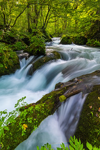 Flowing Water On The Oirase Stream