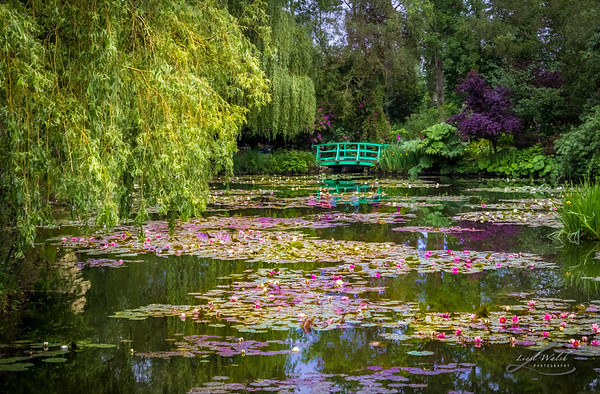 Monet's Waterlily Pond, Giverny, France