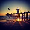 Soaring Pier
