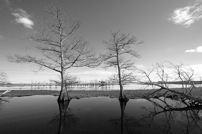 St Johns River South BW