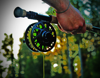 Photogenic Fly Reel