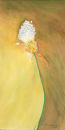 © <b>Tina Thieme Brown</b> - Wild Garlic
