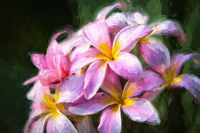 Fall Flowers V2