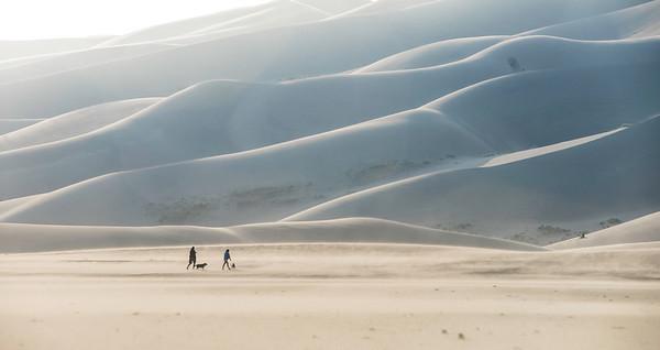 Sand dunes dog walkers