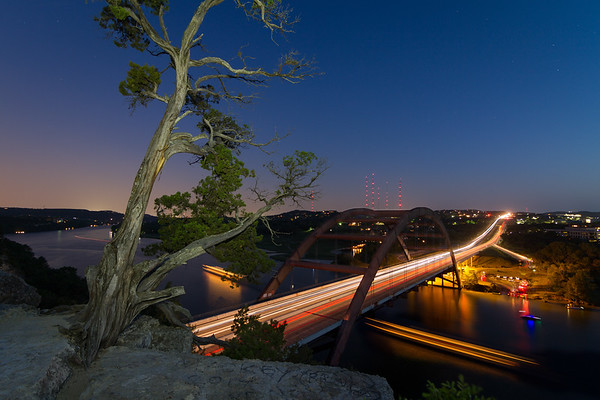 The Tree Over the Pennybacker Bridge