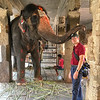 David is blessed by Laxmi, the resident elephant at Virupaksha Temple. Hampi.