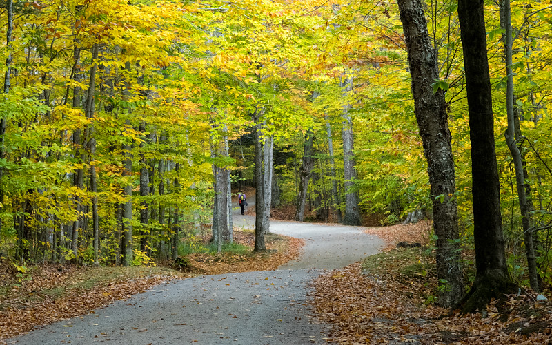 Pretty fall colors on the Lake Road out from Ausable Lake, New York.