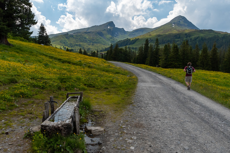 The road to Kleine Scheidegg, and the peaks above it.