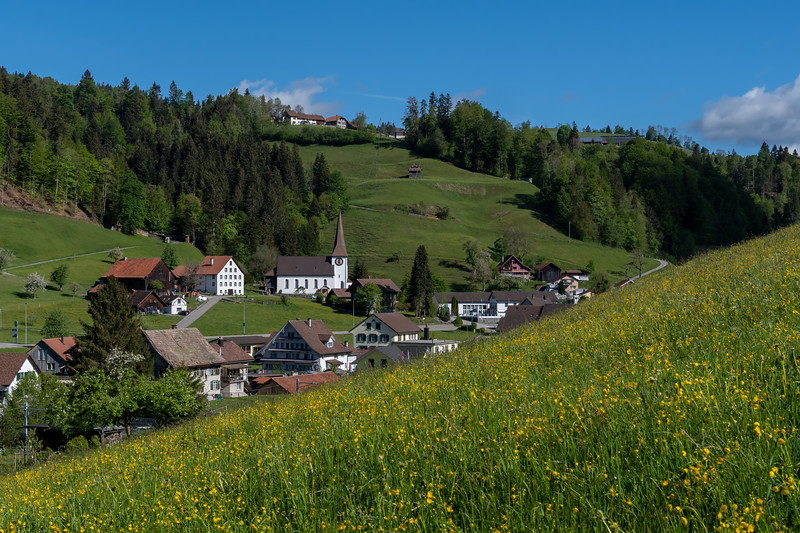 The pretty village of Fischenthal, from a hillside meadow.