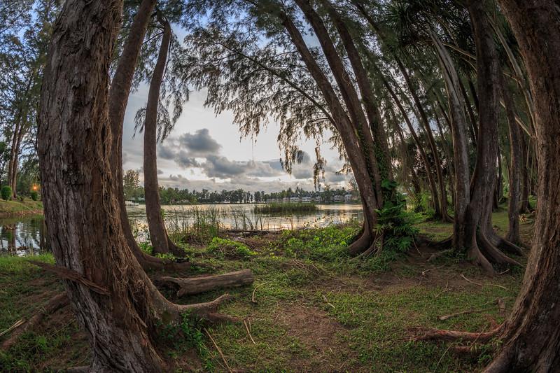 Laguna Dusk