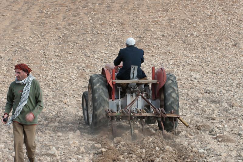 A Palestinian Bedouin, accompanied by a Jewish activist, tills his land 一名巴勒斯坦貝都因人在一位猶太活躍分子的陪同下耕作土地