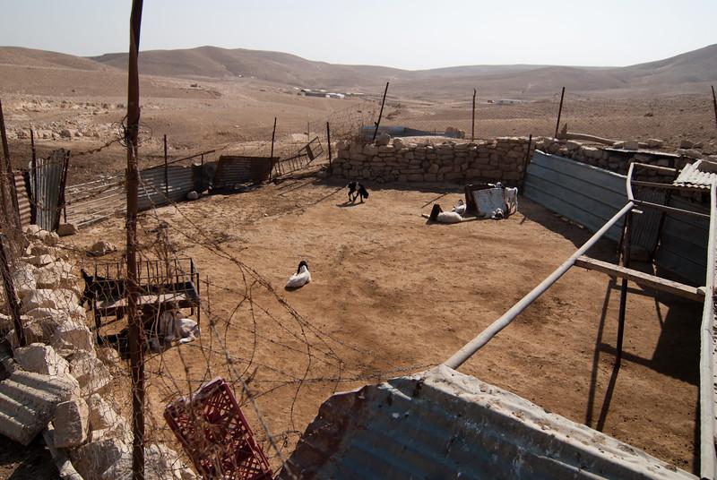 A barn in a Palestinian Bedouin village 某巴勒斯坦貝都因人村落裡的畜棚