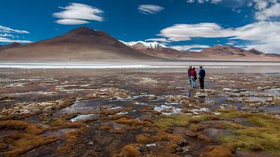 Bolivien - Eduardo Avaroa National Reserve, 4500 Hm