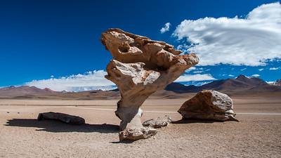 Bolivien - Stone Tree