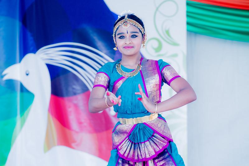 IndiaFest 2015 #mnindiafest2015 #iamif2015 #iamnorg #mnif2015
