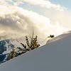 Mt. Fernie