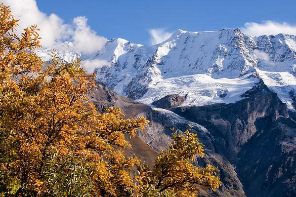 Alpen Autumn