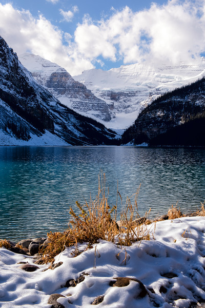 The Blues and Golds of Lake Louise
