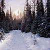 For the Love of Snowshoeing