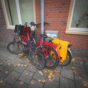 Bikes United into the German Tricolour