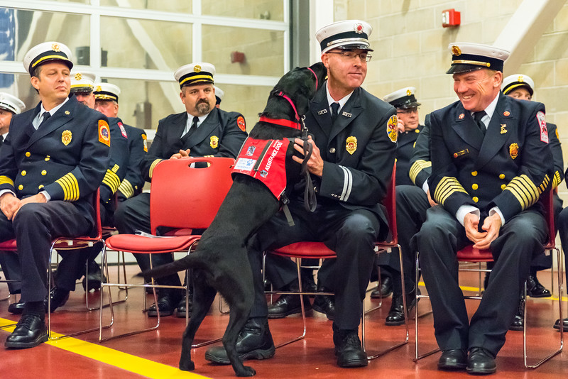 Call/Volunteer Recruit Firefighter Class #78 Graduation Mass Firefighting Academy, Stow, MA  © Maia Kennedy Photography (more pictures at https://www.maiakphotography.com/EVENTS/Massachusetts-Firefighting-Academy-Graduation/)