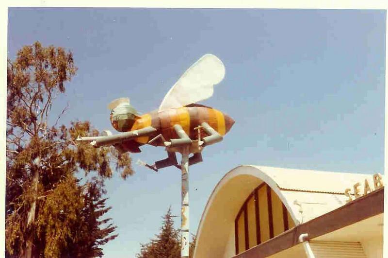 Museum Bee