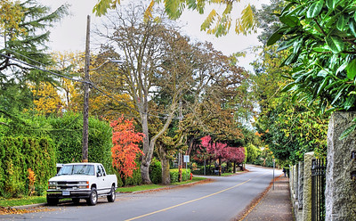 Autumn Street In Old Part Of Town, Victoria, BC, Canada