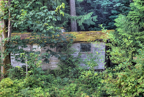 Abandoned House - Cowichan Valley, BC, Canada