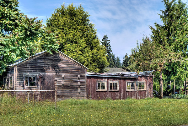 Old Shed - Langford, BC, Canada