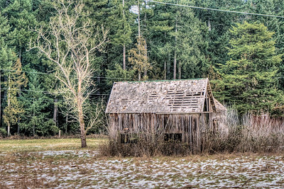 "Abandoned Barn - Vancouver Island, BC, Canada Visit our blog ""Born In A Barn"" for the story behind the photo."