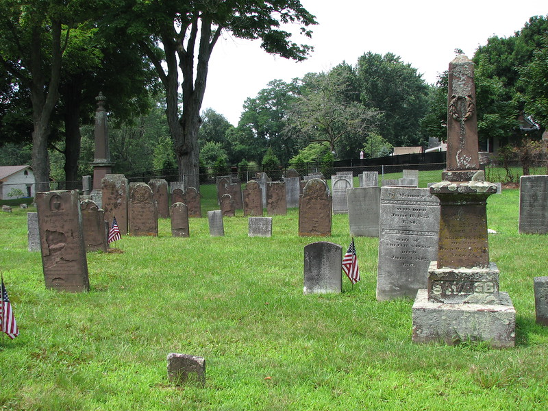 Use this view to locate the grave. Savage's stone is just behind and to the left of the brown obelisk at the right of this photo. The view is looking toward Ranney Rd.<br /> If you look into the cemetery from Ranney Rd, the grave will be found about 1/3 of the way from left to right, and a little less than 1/2 way from front to rear.