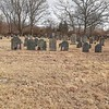 To find the grave, look for this grouping of stones centered left to right, and about 1/3 of the way back in the cemetery. Lemuel's wife Amy's stone is the square-topped white one in the center of the photo.