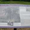 "Interpretive panel at ""Torture Tree"" (click for larger version)<br /> As seen on waymarking.com"