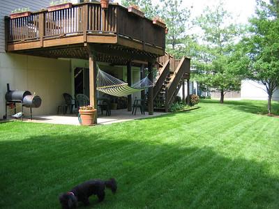 Backyard Spring 2004